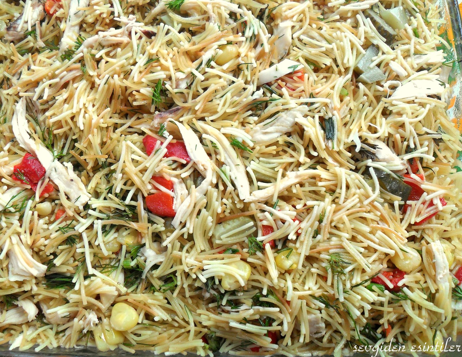 Meksika salatası tarifi resimli ile Etiketlenen Konular