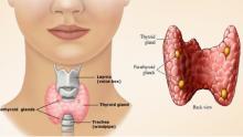 Tiroid bezine 3 haftalık çok güçlü doğal tedavi