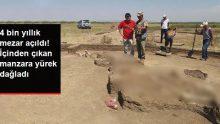 4 bin yıllık mezar açıldı! İçinden çıkan manzara yürek dağladı