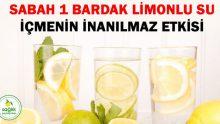 Sabah 1 Bardak Limonlu Su İçmenin İnanılmaz Etkisi