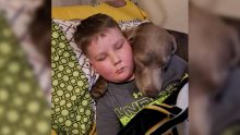 9 Yaşındaki Kanser Hastası Çocuk Babasına Artık Savaşmak İstemediğini Söyledi – Babasının Cevabı Herkesi Ağlattı