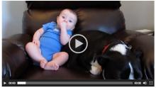 Bebek Altına Yapınca Köpek Bakın Nasıl Tepki Verdi 😅🤣