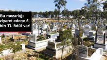 Mezarlığı ziyaret edene 5 bin TL ödül var!
