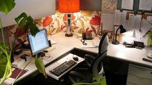 Ofisinizde Bitki Bulundurmak İçin 3 Neden