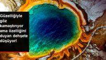 Cıvıl cıvıl duruşuna aldanmayın, dünyanın en tehlikeli yeri! İşte kuşbakışı çekilmiş 12 enfes fotoğraf