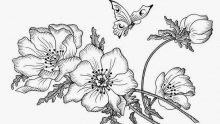 Kumaş Boyama Desen Örnekleri