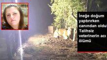 İneğe doğum yaptıran veteriner, elektrik akımına kapılarak hayatını kaybetti