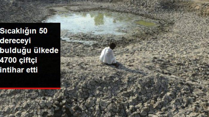 Sıcaklığın 50 dereceyi aştığı ülkede kuraklık felaketi: 5 yılda 4 bin 700 çiftçi intihar etti