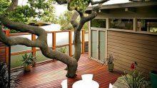 Teras Ve Çatı Bahçesi Örnekleri