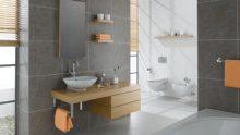 Vitra Banyo Tasarımları
